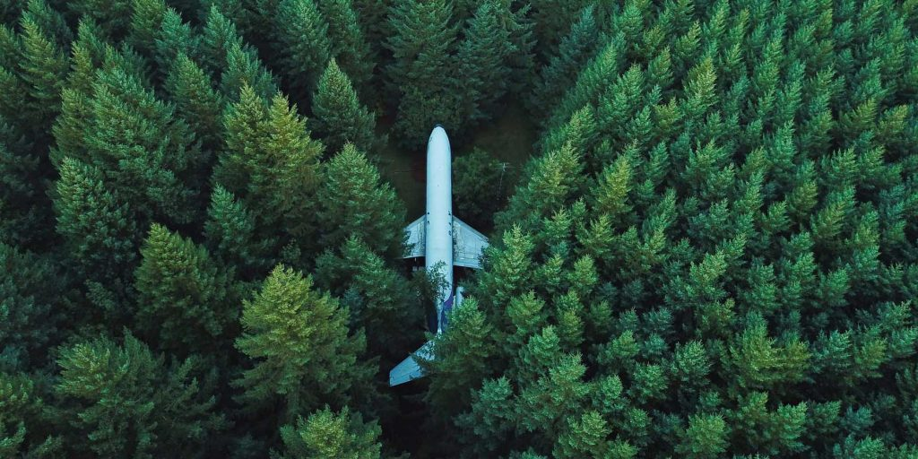 avion en plein milieu d'une foret de pins